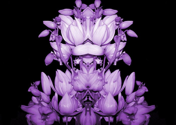 Yucca Greeting Card featuring the photograph Double Purple by Evelyn Patrick