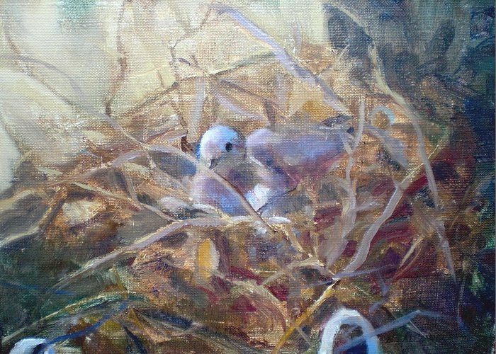 Dove Planter Nest Earth Colors Greeting Card featuring the painting Dove Nesting by Bryan Alexander