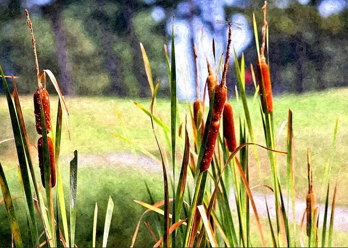Dragon Fly Greeting Card featuring the photograph Dragon Fly And Cattails In Watercolor by Gary Adkins