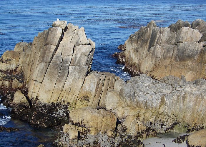 Seascape Greeting Card featuring the photograph Dragons Back by Maggie Cruser