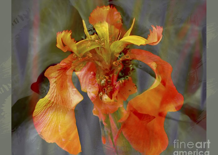 Floral Greeting Card featuring the photograph Dragons Breath by Chuck Brittenham