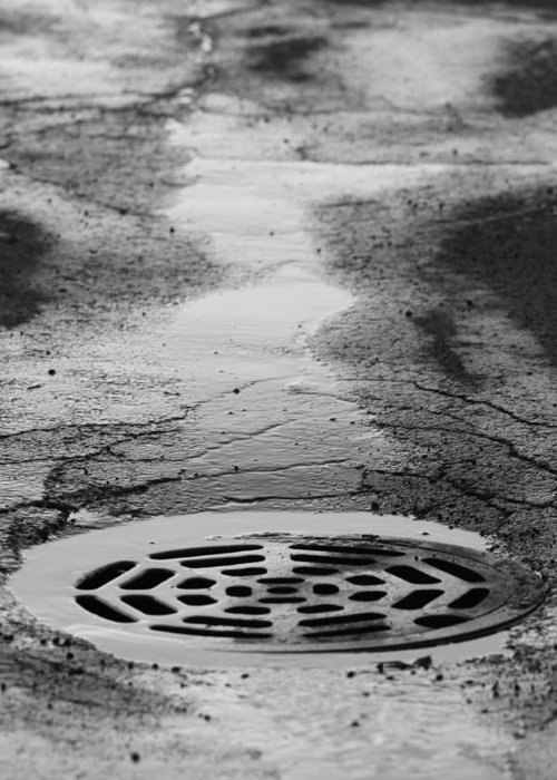 Drain Greeting Card featuring the photograph Drained by Lauri Novak