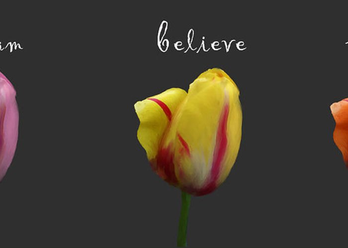 Dream Greeting Card featuring the photograph Dream Believe Achieve by Patricia Ridlon