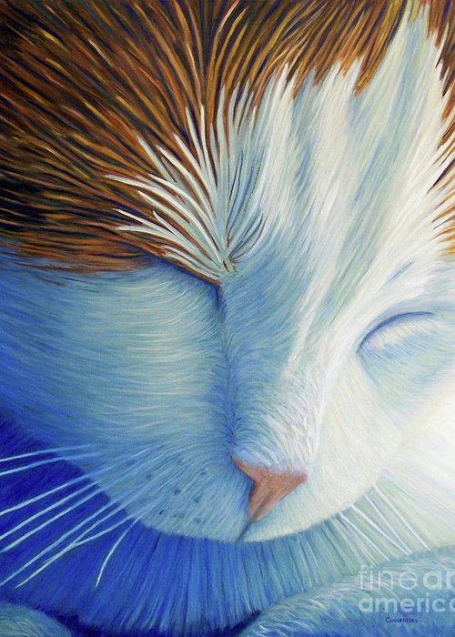 Cat Greeting Card featuring the painting Dream Within A Dream by Brian Commerford