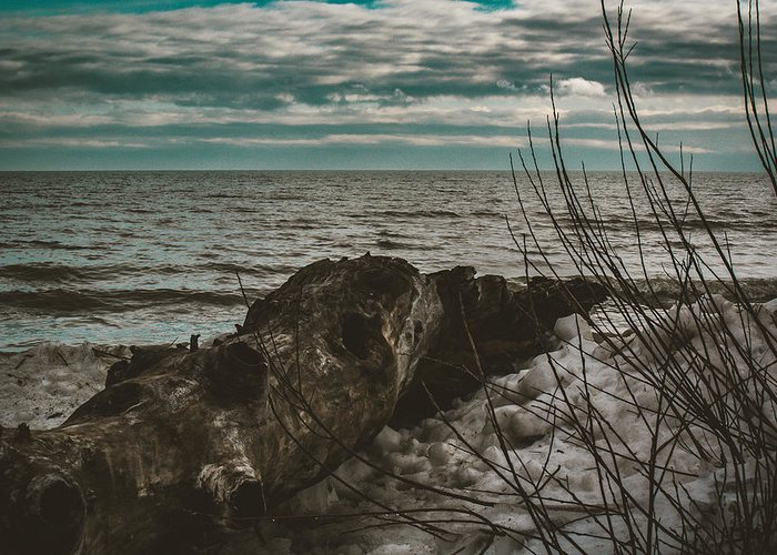 Lake Huron Greeting Card featuring the photograph Drift Away by Kristin Hunt