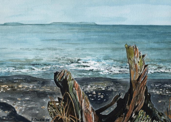 Watercolor Greeting Card featuring the painting Driftwood by Brenda Owen
