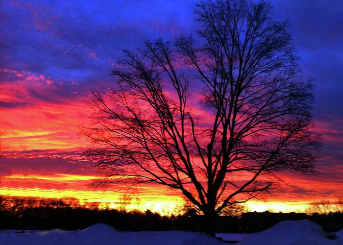 Sunrise Greeting Card featuring the photograph Driveby Shooting No. 8 - Valentine's Sunrise by Christine Segalas
