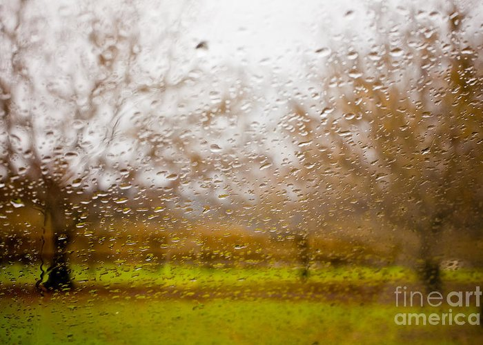Sonoma County Greeting Card featuring the photograph Droplets I by Derek Selander
