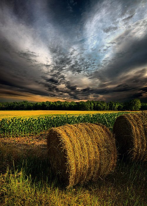 Horizons Greeting Card featuring the photograph Drought by Phil Koch