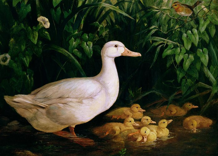 Duck Greeting Card featuring the painting Duck And Ducklings by English School