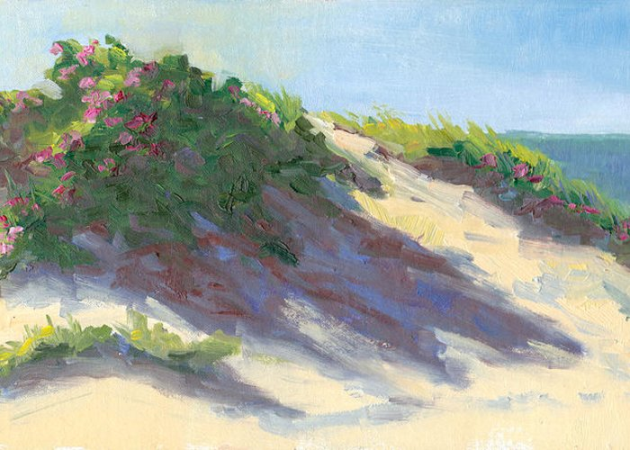 Cape Cod Greeting Card featuring the photograph Dune Roses by Barbara Hageman