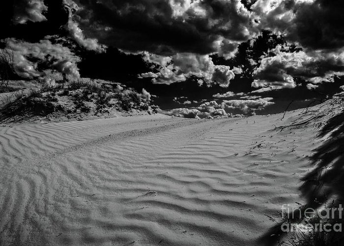 Wandering Dune Greeting Card featuring the photograph Dune by Tino Lehmann