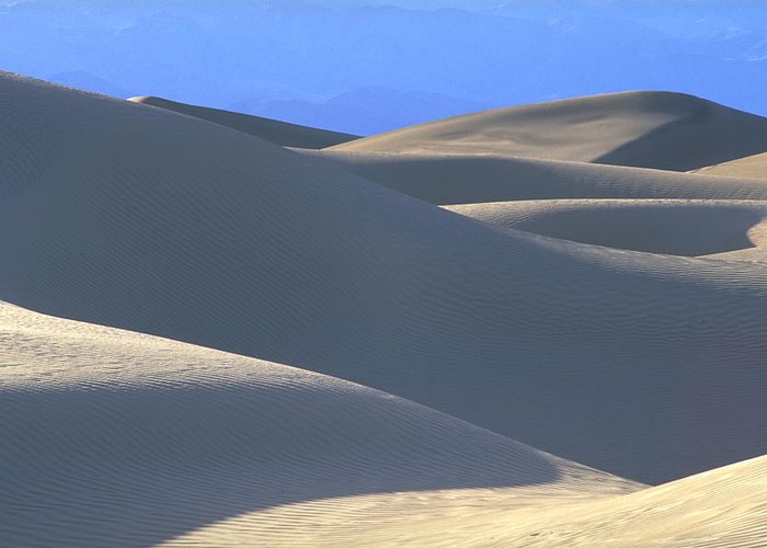 Dunes Blue Mountain Background Greeting Card featuring the photograph Dunes And Blue Mountains by John Farley