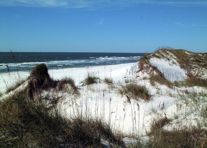 Water Greeting Card featuring the photograph Dunes On St. Joseph by George Elliott