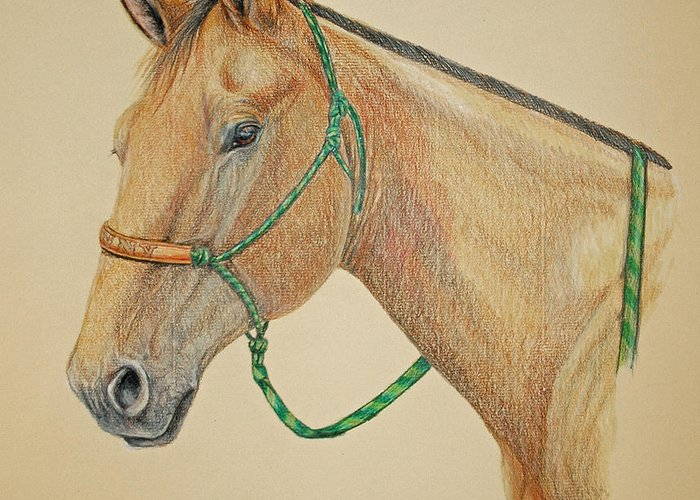 Equine Greeting Card featuring the drawing Dunny by Suzanne McKee