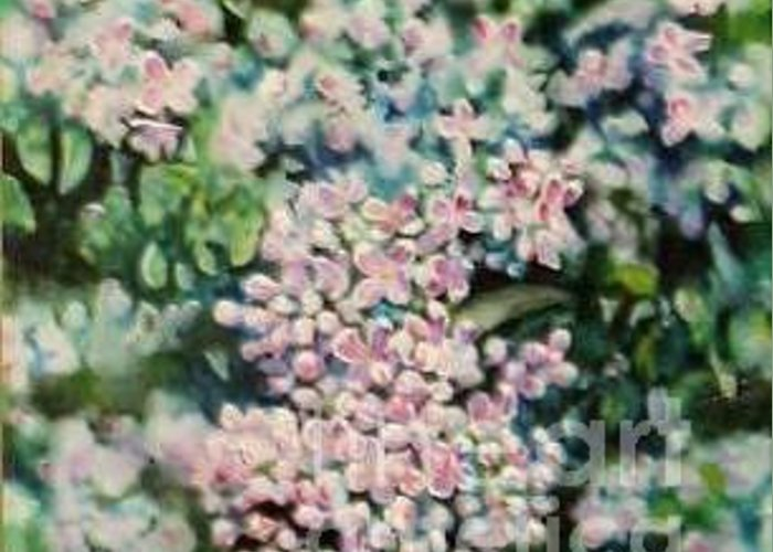 Lilacs Greeting Card featuring the painting Dwarf Korean Lilac by Karen Sloan