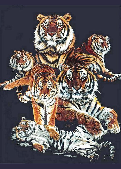 Tiger Greeting Card featuring the drawing Dynasty by Barbara Keith