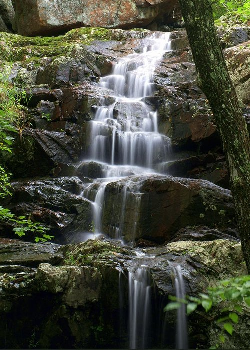 Waterfalls Greeting Card featuring the photograph E Falls by Marty Koch