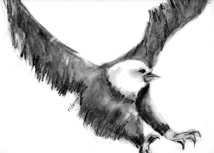 Eagle Greeting Card featuring the drawing Eagle In Flight by Marilyn Barton