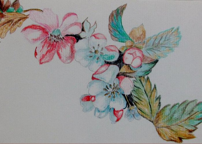 Flowers Greeting Card featuring the drawing Early Morning Bloom by Nkese Miller
