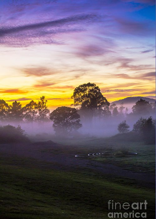 Paddockmorning Mist Greeting Card featuring the photograph Early morning mist by Sheila Smart Fine Art Photography