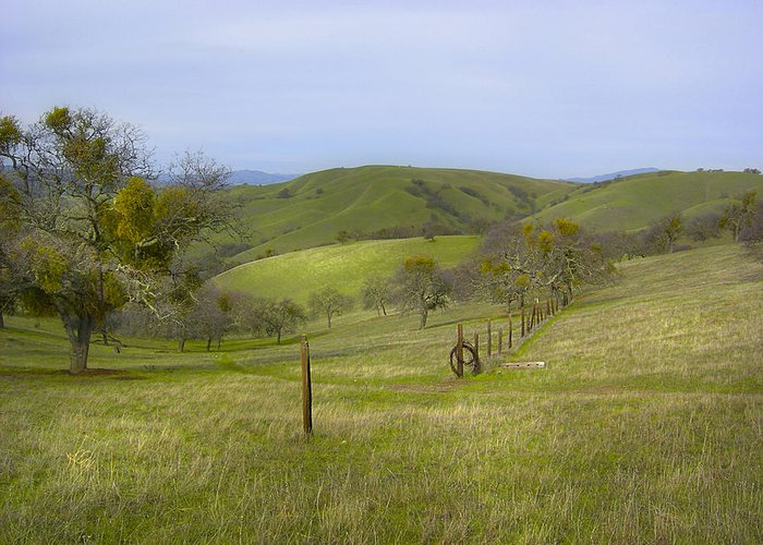 Landscape Greeting Card featuring the photograph East Ridge Trail Barbed Wire by Karen W Meyer
