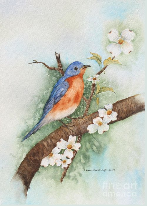 Eastern bluebird greeting card for sale by grace ashcraft eastern bluebird greeting card featuring the painting eastern bluebird by grace ashcraft m4hsunfo