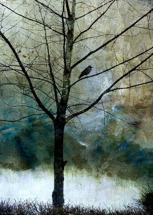 Crow Greeting Card featuring the photograph Eastward by Carol Leigh