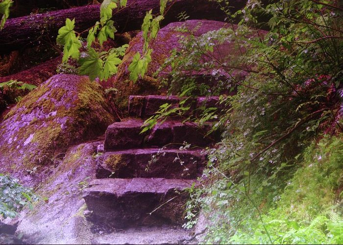 Stairs Greeting Card featuring the photograph Easy Steps by Jeff Swan