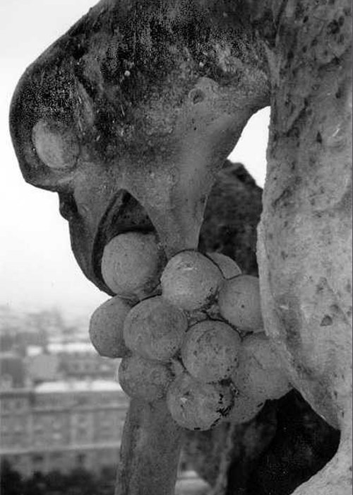 Gargoyle Greeting Card featuring the photograph Eating by Susan Chandler
