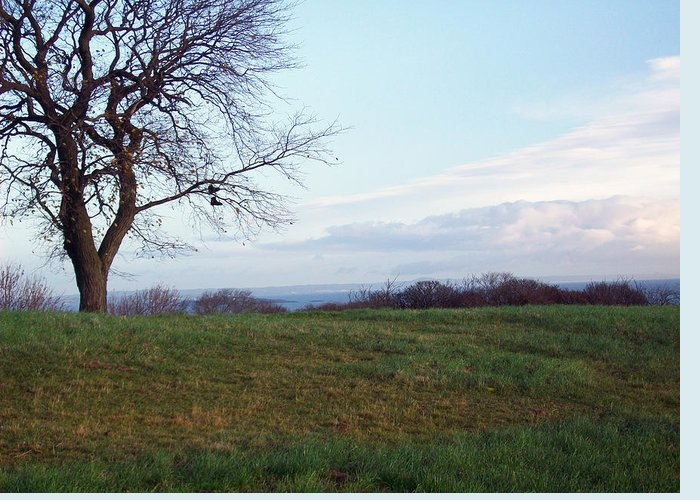 Photography Greeting Card featuring the photograph Edinburgh - Boots On The Tree by Munir Alawi