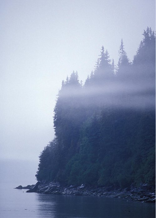 Shorelines Greeting Card featuring the photograph Eerie Seascape With Trees, Cliff by Rich Reid