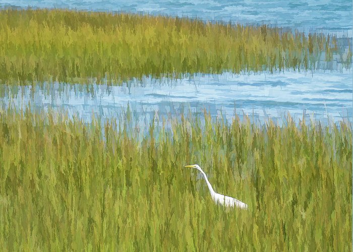 Bird Greeting Card featuring the photograph Egret by Dave Thompsen