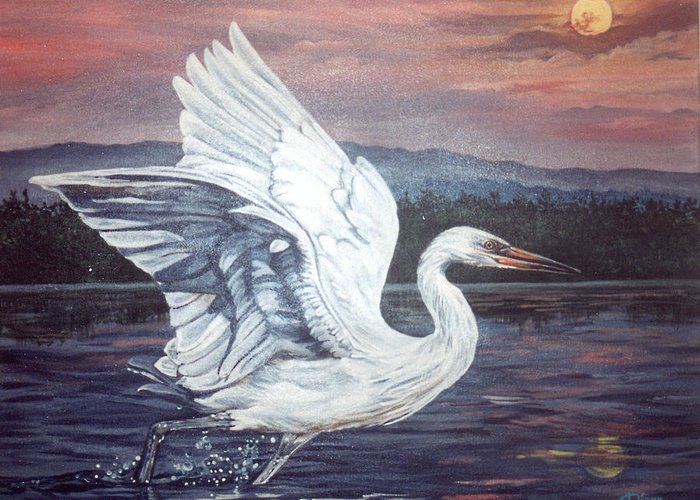 Bird Greeting Card featuring the painting Egret by Diann Baggett