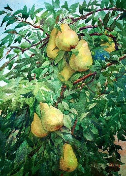 Peter Sit Watercolor Greeting Card featuring the painting Eight Pears by Peter Sit