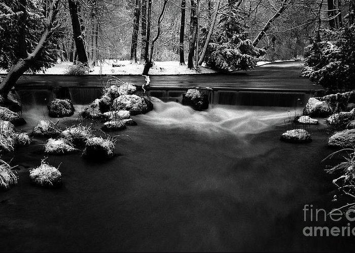 Creek Greeting Card featuring the photograph Eisbach In The Winter by Hannes Cmarits