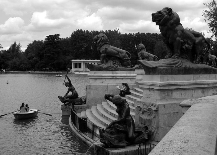 Black And White Greeting Card featuring the photograph El Lago De Retiro by Lindsey Orlando