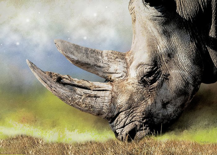 Rhino Greeting Card featuring the digital art Elderly Gentleman-sketch by Ericamaxine Price