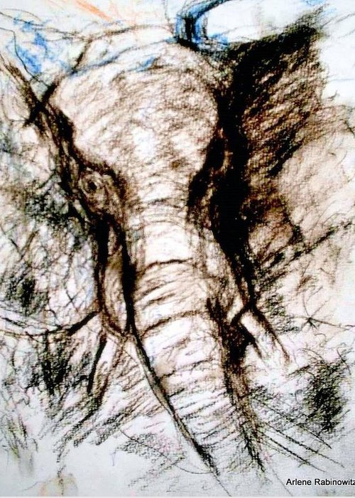 Animals Greeting Card featuring the drawing Elephant Charge by Arlene Rabinowitz