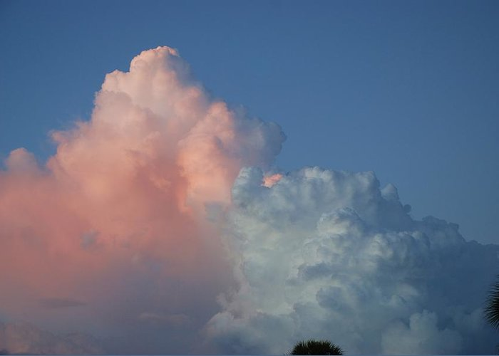 Clouds Greeting Card featuring the photograph Elephants Clouds by Rob Hans