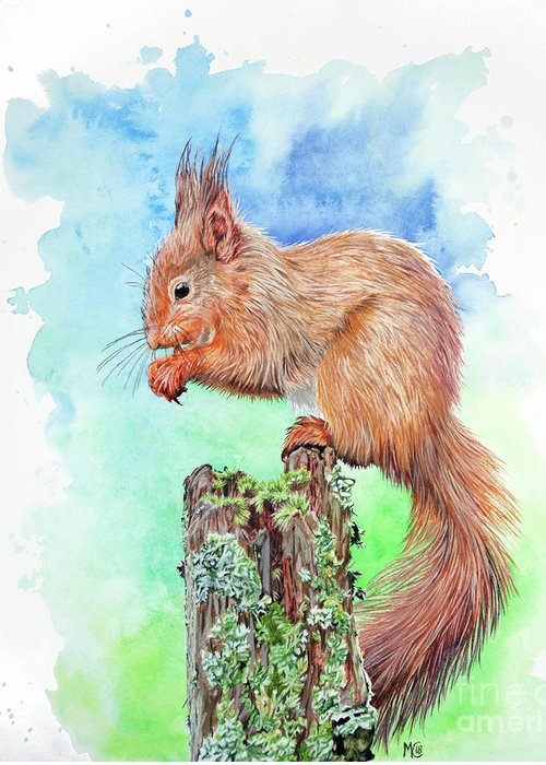 Red Squirrel Greeting Card featuring the painting Elevenses - Red Squirrel by Michelle Cashmore