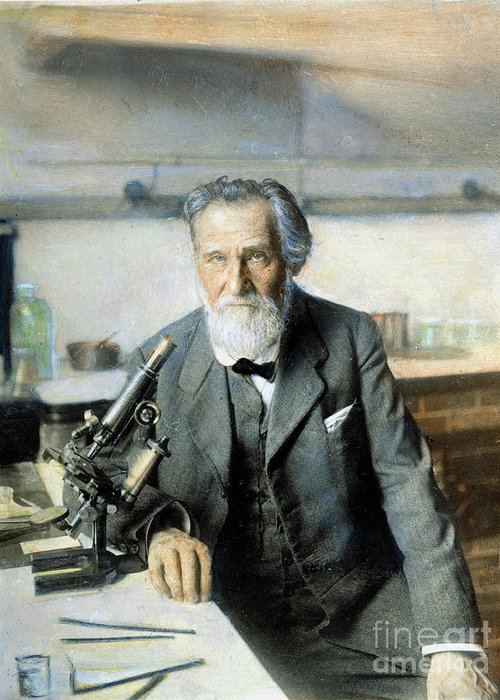 20th Century Greeting Card featuring the photograph Elie Metchnikoff (1845-1916) by Granger