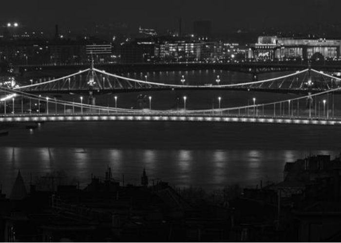 Joan Carroll Greeting Card featuring the photograph Elizabeth And Liberty Bridges Budapest Bw by Joan Carroll