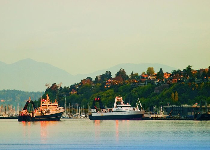 Elliot Bay Greeting Card featuring the photograph Elliot Bay by Jim DeLillo