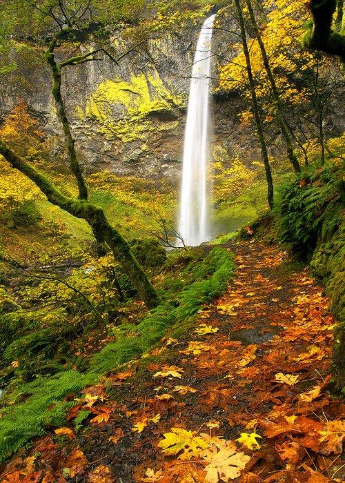 Elowah Falls Greeting Card featuring the photograph Elowah Autumn Trail by Mike Dawson