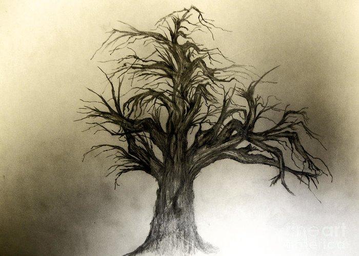 Tree Greeting Card featuring the drawing Enchanted by John Krakora