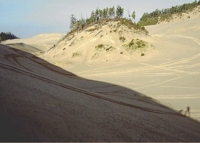 Oregon Dunes National Recreation Area Greeting Card featuring the photograph Ephemeral by Eike Kistenmacher