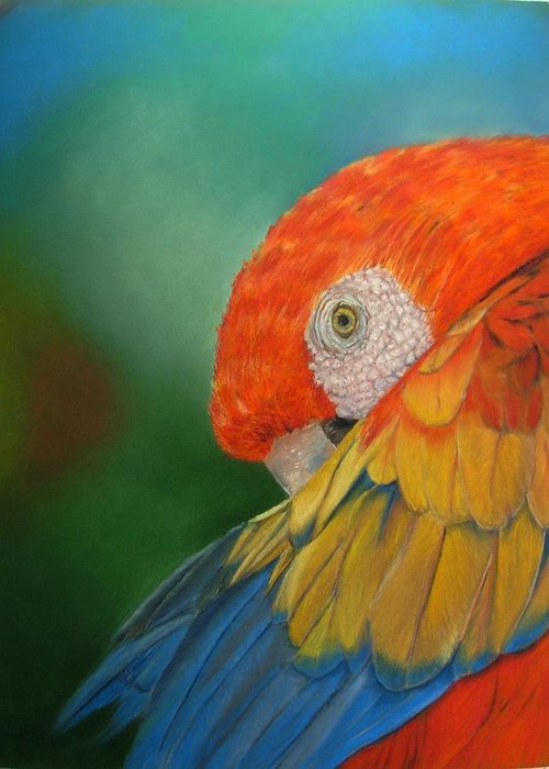 Bird Greeting Card featuring the painting Escondida by Ceci Watson