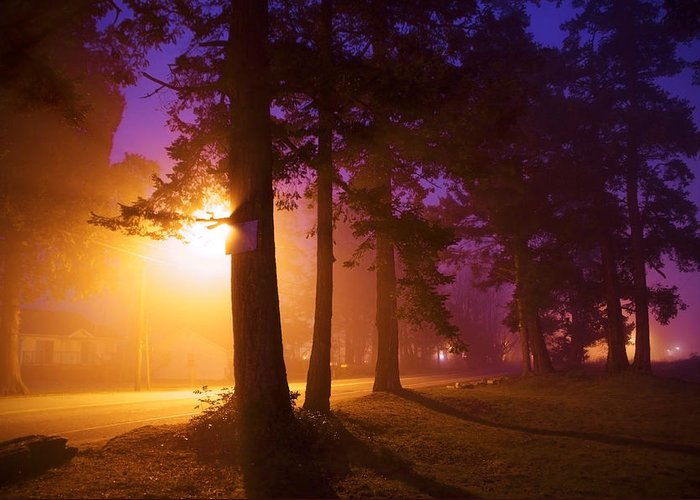 Fog Greeting Card featuring the photograph Ettiene's Dawn One by Julius Reque
