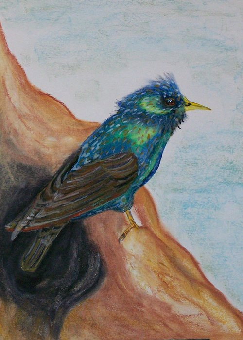 Pastel Greeting Card featuring the pastel European Starling by Pamela Wilson